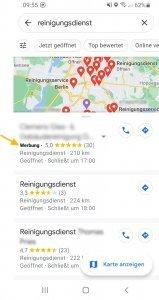 Beispielbild Anzeige Google Maps zu Reinigungsdienst