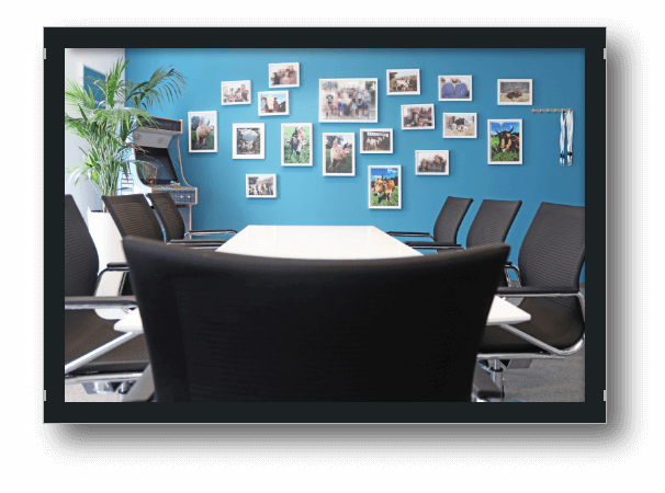 Bild Office Einblicke 5. Etage