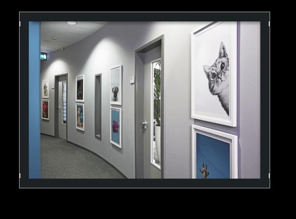Bild Flur 6 Etage